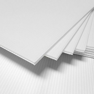 5 pcs Corrugated Plastic 18x24 4mm White Blank Sign Sheets Coroplast *Vertical