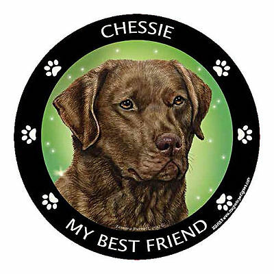 My Chesapeake Bay Retriever Chessie Is My Best Friend Dog Car Magnet