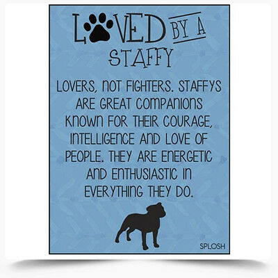 Loved By A Staffy Dog Fridge Magnet