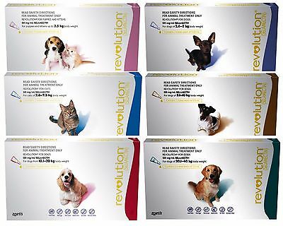 Revolution Flea Treatment for Dogs & Cats Heartworm Worming All Sizes Free Post
