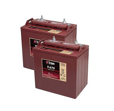 2x T-875 Trojan Battery Deep Cycling (T875) 8V 170Ah - 2 Years Warranty