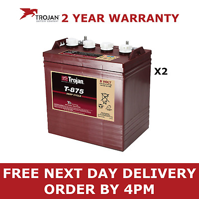 Pair of T-875 Trojan Battery Deep Cycle (T875) 8V