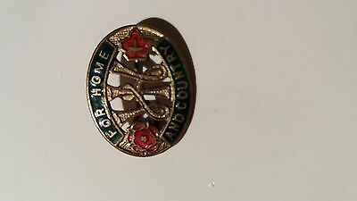 Vintage Wi Enamel Badge/broach