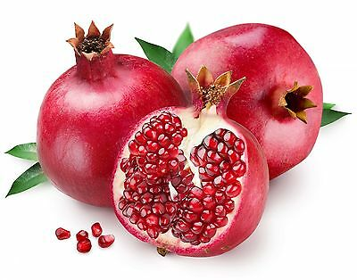 earthsgarden POMEGRANATE SEED OIL 100% PURE NATURAL ORGANIC BASE CARRIER OIL