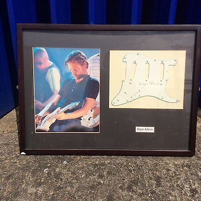 Bryan Adams Framed picture with Signed guitar scratchplate