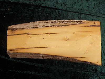 Huon pine sculptural board - Base board, fine wood projects, sculptural.