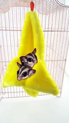 Qin Rodent or Sugar Glider Thick Cage Banana Pouch