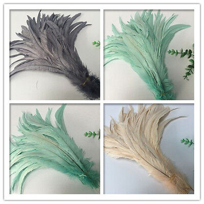 Wholesale! 10-1000 pcs Special colors rooster tail feathers 12-14 inches/30-35cm