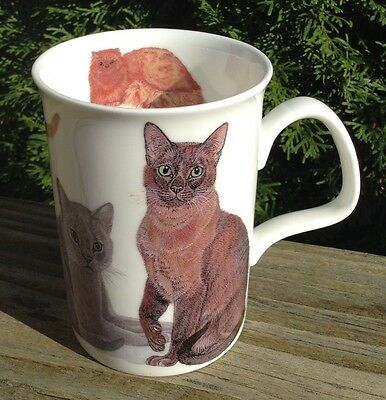 The Henley Collection 2013 England Cat Lady Cup Mug Fine China K.M. Hassell