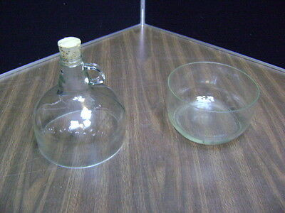 one GALLON Bottle, jug, carboy/wine making/beer jug/ UNIQUE DISH ***LOOK***