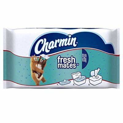 Charmin Freshmates Flushable Wet Wipes, 40 Count (Pack of 12) New