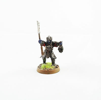 Warhammer Army Lord Of The Rings  Character  painted and based
