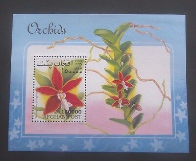 Afghanistan-1999-Flower/Orchid Minisheet-MNH