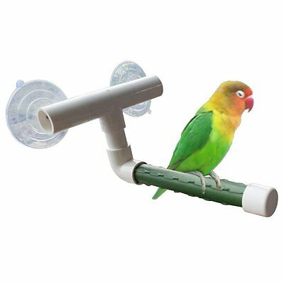 Qin Window and Shower Bird Perch, Small