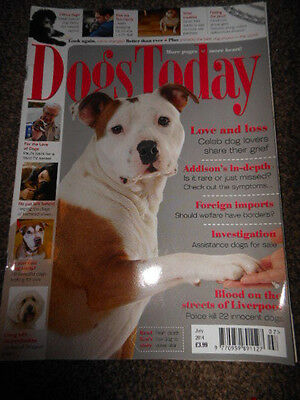 Dogs Today Magazine July 14 Goldendoodles/Poo Eating