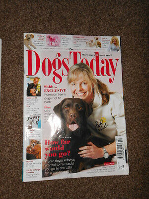 Dogs Today Magazine Sep 2014/Poodle Crosses