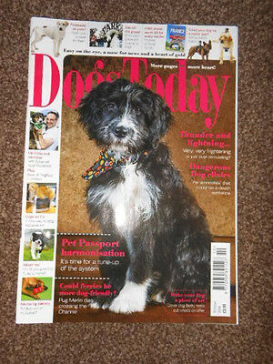Dogs Today Magazine Oct 2014 / Foxhounds