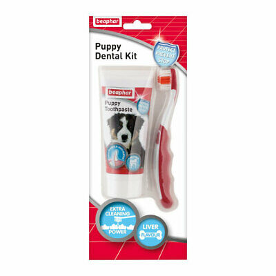 Beaphar Puppy Dental Kit with Enzyme Toothpaste and Bristle Toothbrush for Dogs