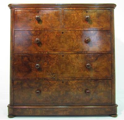 A Good Large Antique 19th C Burr Walnut Chest of Drawers