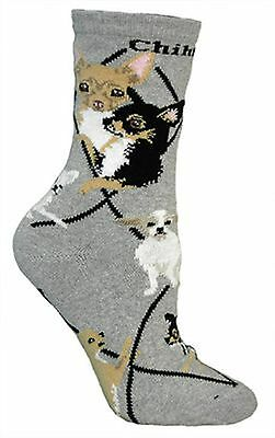 Chihuahua Dog Design Adult Novelty Socks In Grey New - Great Gift Idea PH286