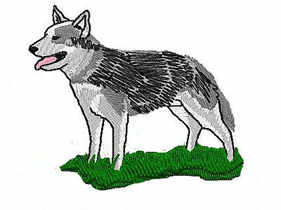 Australian Cattle Dog  Embroidery Patch grass
