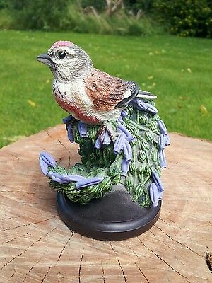 The Linnet. The Country Bird Collection.  Eaglemoss. Hand Painted.
