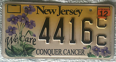 2006 New Jersey NJ Conquer Cancer License Plate