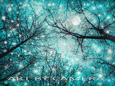 ONSALE !! Original Fine Art  8X10 Signed Artistic Photo of Stars, Moon and Trees