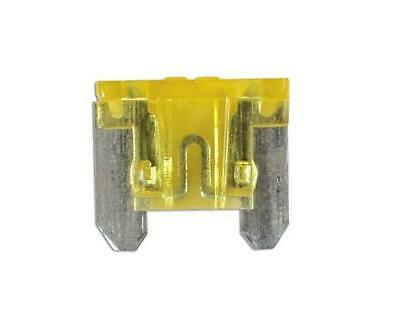 Car Spare 100x Micro Blade Fuses 20 Amp For Marine & Automotive