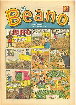 Beano Comic 1245 May 28Th 1966. Vg+ Condition