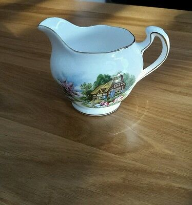 Royal Vale Bone China Country Cottage Milk Jug /Creamer.