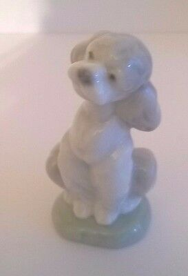 Lladro Members Society  porcelain poodle puppy  A Friend for Life