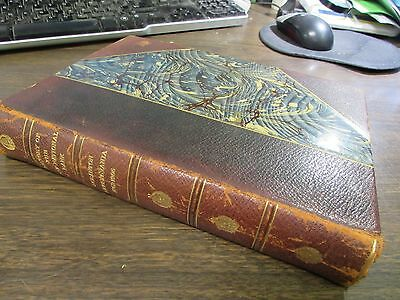 History The First National Bank Of Scranton Pa - Published 1906 - Very Good