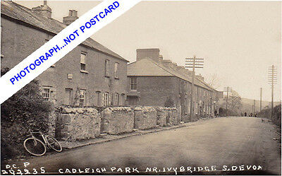 CADLEIGH PARK COTTAGES, nr IVYBRIDGE & LEE MILL( EARLY 1900s) nr PLYMOUTH-DEVON.