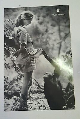 Laminated Apple Jane Goodall Think Different Poster 11x17 by Steve Jobs