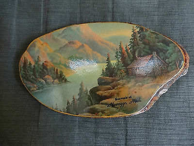 Vintage Made from Tree NEWAYGO Rustic Lake Scene 10 in. Plaque SOUVENIR MICHIGAN