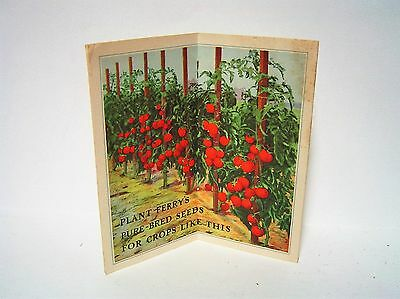 1930's Vintage FERRY MORSES SEED CO FERRY'S OAKVIEW STOCK SEED FARM Advertising