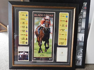 black caviar royal ascot framed print with racebook in frame
