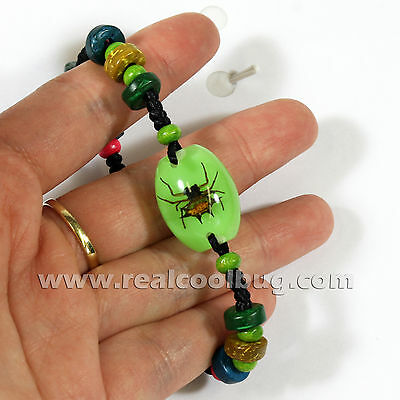 Real Spiny Spider Bracelet Green Background with Beads (NBL103)