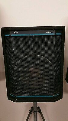 Peavey Hysis1  pair of  Dj band P.a. speakers