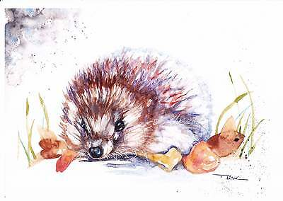 NEW A4 PRINT of an Original Watercolour Painting by Be Coventry,Autumn Hedgehog