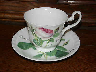 Genuine Roy Kirkham Redoute Rose tea cup and saucer  excellent (304B)