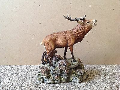 Border Fine Arts RED STAG (Style Two)