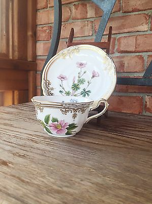 Spode Stafford Flowers Bone China Cup & Saucer Gold Oxalis Thumberia
