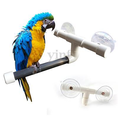Pet Bird Perches Wall Suction Cup Toys Paw Grinding Shower Stand Parrot 22cm