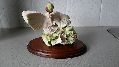 Danbury Mint Flower Fairies White  Bindweed Fairy FFF04
