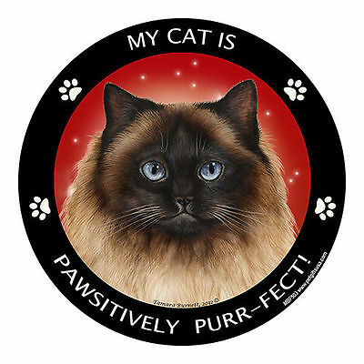 My Himalayan Cat Is My Best Friend Dog Car Magnet