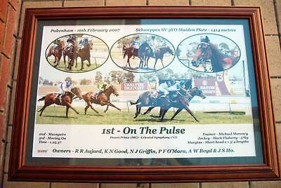 """""""On The Pulse"""" Jockey Mark Flaherty - Framed Horse Racing photo picture"""