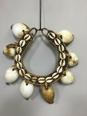 Indonesia Flores Island Luba Initation Cowrie Shell Necklace