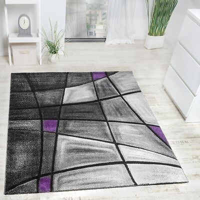 Modern Rug Designer Rugs Living Area Mats Grey Purple Lila Small Large Size Rugs